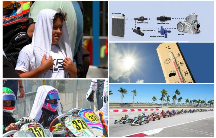 Llegó el calor: Precauciones y consejos a tener en cuenta